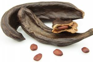 Carob beans and pod
